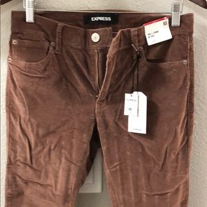 Express brown corduroy pants